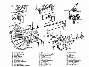 Chevy S10 Manual Transmission Diagram