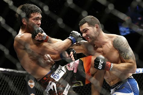 Knocking Out 2014 Ufc Mma Style