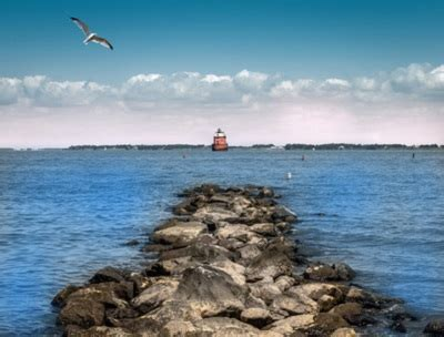 Jacksonville To Bahamas By Boat by Jacksonville Cruises Jacksonville Cruise Cruises From