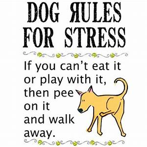 13 best Cartoon... Stress Humor Quotes