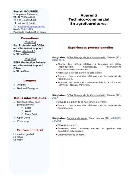 Exemple Cv Télécharger by Exle Resume Modele Cv Anglais Informatique