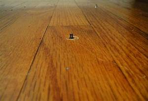 How to stop squeaky wood floors nhl17tradercom for How to stop a wood floor from squeaking