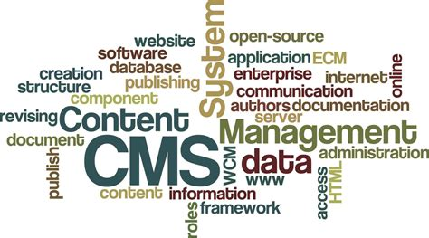 the importance of a content management system in web design mvestor media