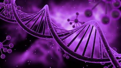 Dna Helix Double Science Background Animated Fi