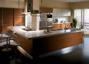 modern kitchen remodeling ideas modern kitchen design ideas 2011 home interiors