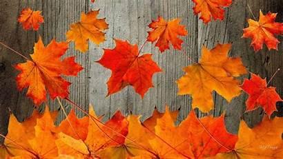 Fall Wallpapers Desktop