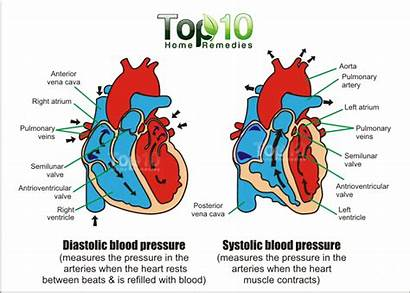 Pressure Blood Lower Reading Remedies Diastolic Systolic