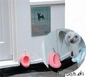 Rohrreiniger Für Toilette : toilette f r hunde bild ~ Frokenaadalensverden.com Haus und Dekorationen