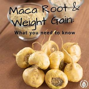 Maca Root And Weight Gain  What You Need To Know