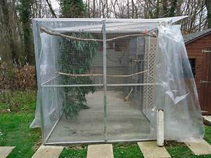 Fabrication D Une Voliere Exterieur : mon installation de maintenant ext rieur becscrochus64 ~ Premium-room.com Idées de Décoration