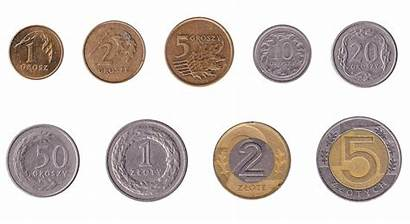 Polish Zloty Coins Poland Pln Exchange Currency