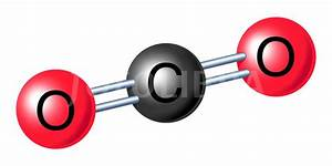Winterm Chemistry  Activity 3  Common Molecules