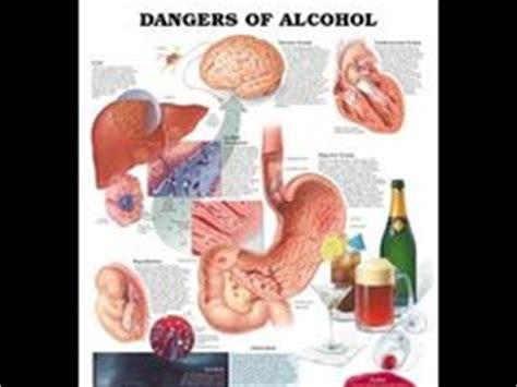 liver damage  alcohol images alcohol fatty