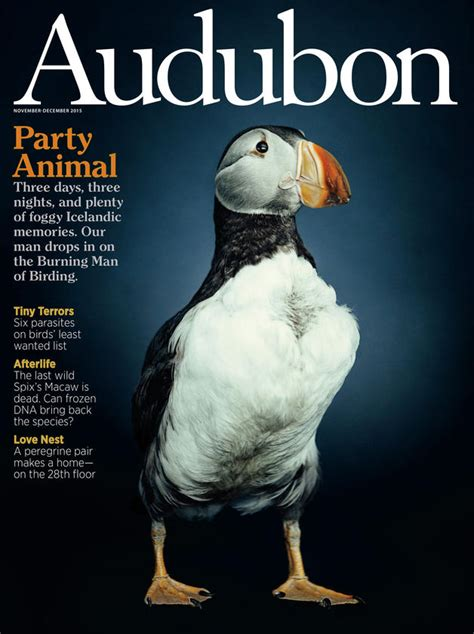 past issues past issues audubon
