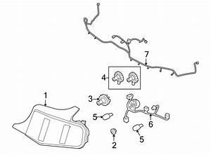 Ford Mustang Tail Light Harness  W  Reverse Sensor