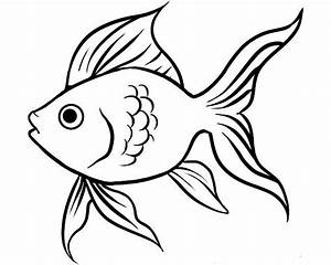 Fish Outline Drawing - ClipArt Best