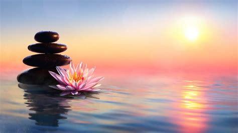 meditation zen calming relaxing nirvana mind mindfulness relief lebensberatung rozenfelds sleep shaina quiz nature proprofs yin quan gens conscients deviennent