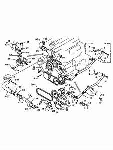 34 Mercruiser Raw Water Pump Diagram
