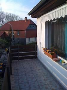 katzennetz berlin stunning katzennetz system fr garten With markise balkon mit tapeten berlin