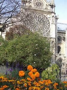 Les Fleurs Paris : les fleurs au jardin de notre dame de paris cathedrale ~ Voncanada.com Idées de Décoration