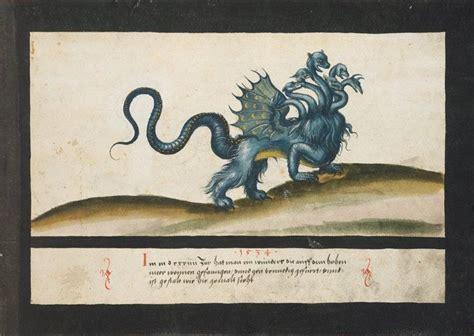 book  miracles wondrous medieval illustrations  divine horror flashbak