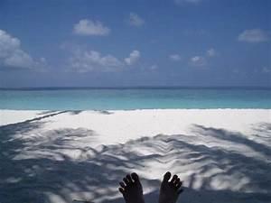 Transat De Plage : notre plage du transat on ne voit pas les sacs de sable ~ Dode.kayakingforconservation.com Idées de Décoration