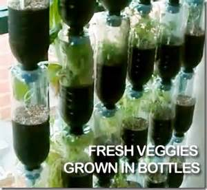 recycled plastic bottles to awesome vertical vegetable