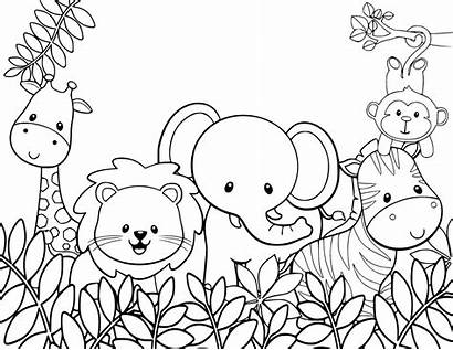Coloring Animals Animal Pages Jungle
