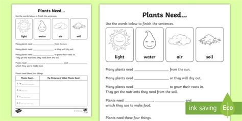 plants need worksheet activity sheet acssu002 growing