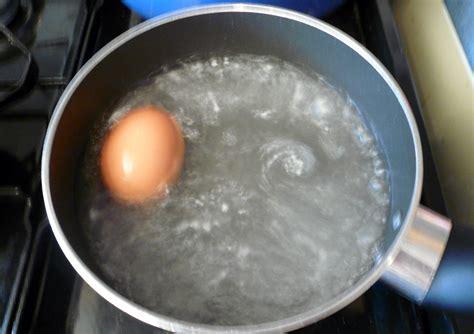 boiling an egg boiling an egg nen gallery