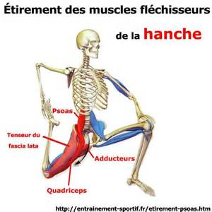 Psoas Muscle Stretching