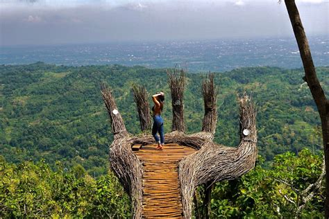 hutan pinus pengger  yogyakarta indonesia atkatea