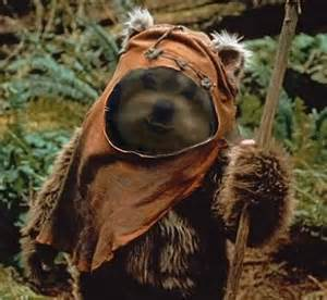 Star Wars Ewok Costumes for Dogs Pattern