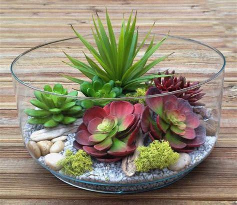 mini plante grasse d 233 corez avec les plantes grasses d int 233 rieur archzine fr