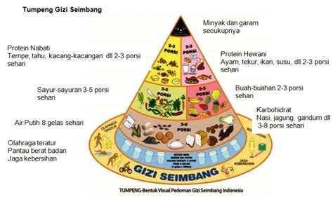 Contoh Gizi Seimbang Dalam Menu Makanan Smartmama