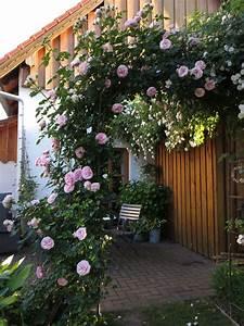 Rosen Für Rosenbogen : garten rosenbogen pflanzbogen ideen garten rosenbogen pflanzbogen ideen pinterest ~ Orissabook.com Haus und Dekorationen