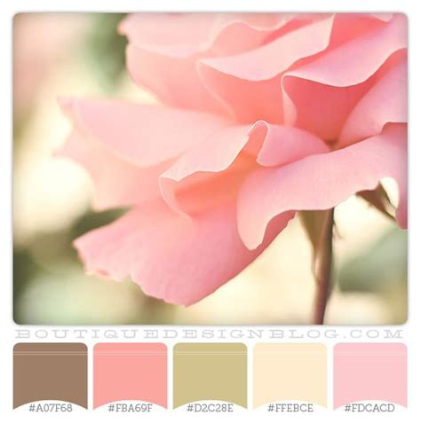 perfectly pink color scheme  soft pink brown