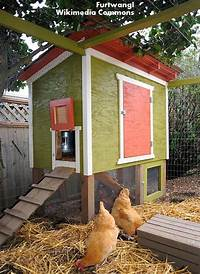 chicken coop designs Roots 'n' Shoots: The C Files: How to raise chickens ...