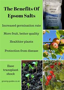 The Benefits Of Epsom Salts
