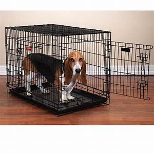 proselect everlasting dual door folding dog crate black With why crate a dog
