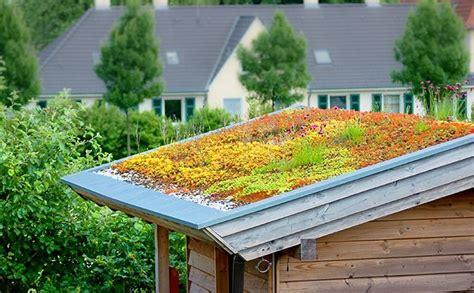 Extensive Dachbegrünung Garage Kosten by Comment R 233 Aliser Une Toiture V 233 G 233 Tale Sant 233 Naturelle Bio