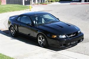 For Sale: 2003 Black Ford Mustang Cobra | SVTPerformance.com