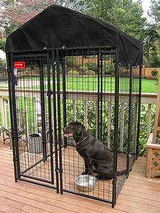 dog houses for sale at lowes cheap unique lowes dog With lowes dog kennels for sale