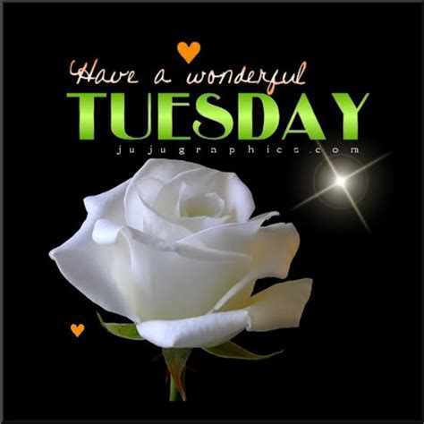 wonderful tuesday  graphics quotes comments