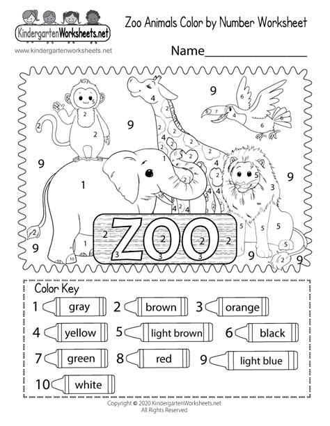 zoo coloring worksheet  kindergarten learning