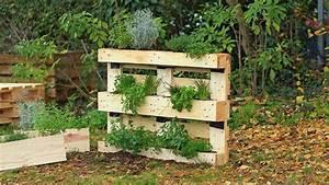 Grüne Wand Selber Bauen : pflanzenwand selber bauen pflanzenwand selber bauen ~ Bigdaddyawards.com Haus und Dekorationen
