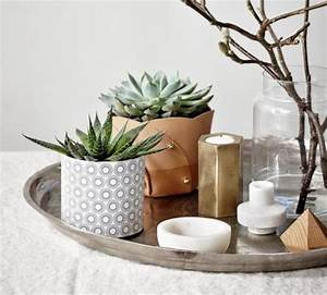 decorez avec les plantes grasses d39interieur archzinefr With déco chambre bébé pas cher avec realiser un bac a fleur en bois