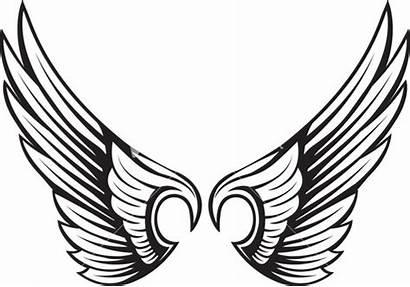 Wings Vector Element Clipart Clip Lion Ornament
