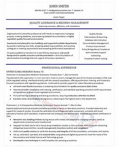 executive resume samples professional resume samples With it executive resume template
