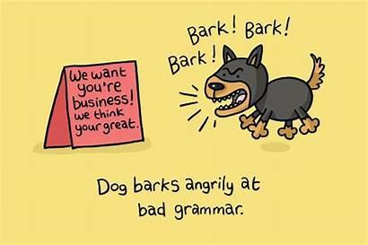 Grammar Bad Punctuation Dog Funny English Poor